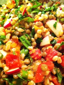Lentil Farro Salad